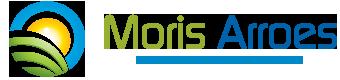 Morís Arroes